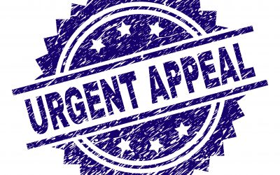 Urgent Appeal – Toiletries for female refugees from Afghanistan